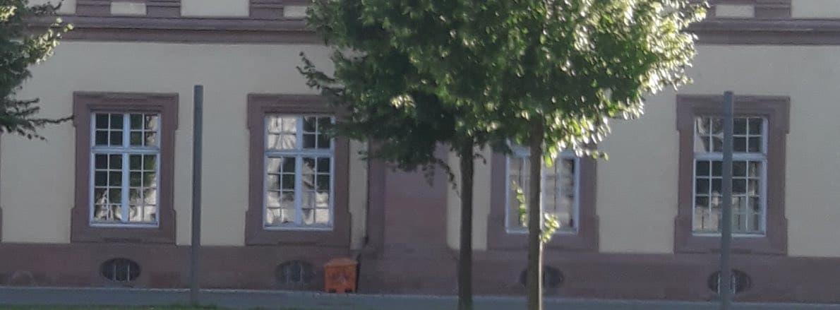 Notar in Mannheim zum Pro und Contra von Schenkungen